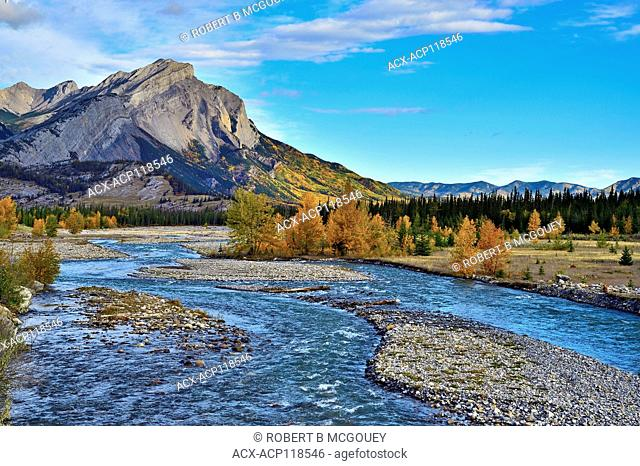 An autumn landscape image of Fiddle River flowing towards the Athabasca river in Jasper National Park,Alberta,Canada