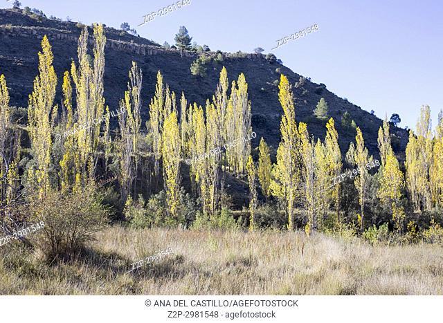 Autumn country Alcala de la Selva. Teruel, Aragon, Spain
