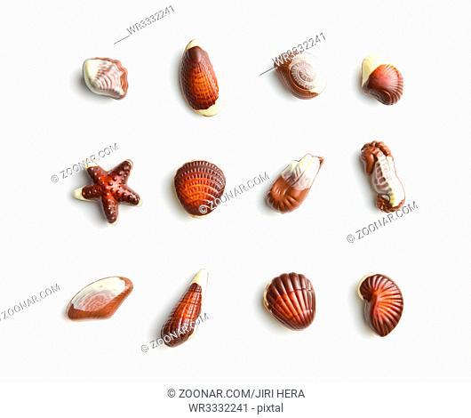 Sweet chocolate seashells isolated on white background