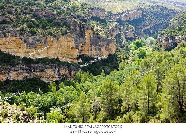 Turia river gorge, Santa Cruz de Moya, Cuenca province, Castilla-La Mancha, Spain