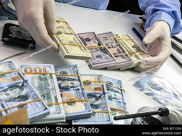 Specialised police officer Counting dollar banknotes in crime lab, conceptual image