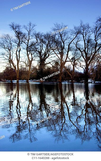 flooded river, winter, penshurst, sunset, kent ,england, uk