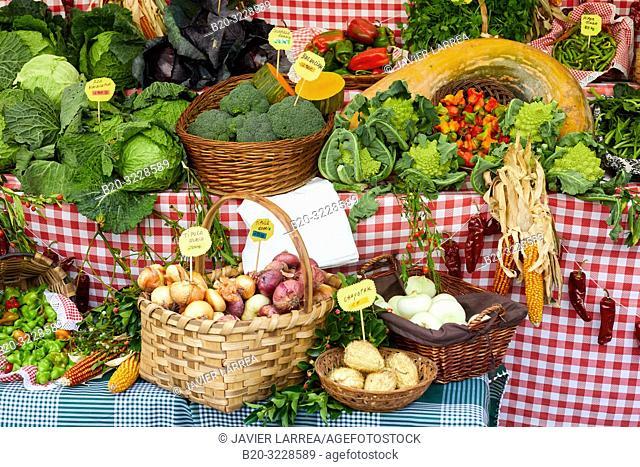 Vegetable garden display, folklore fair of Santo Tomas, Donostia, San Sebastian, Gipuzkoa, Basque Country, Spain, Europe