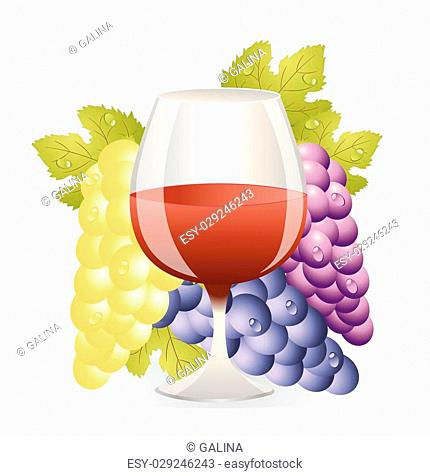 glass of red wine and cluster of vine,vector illustration