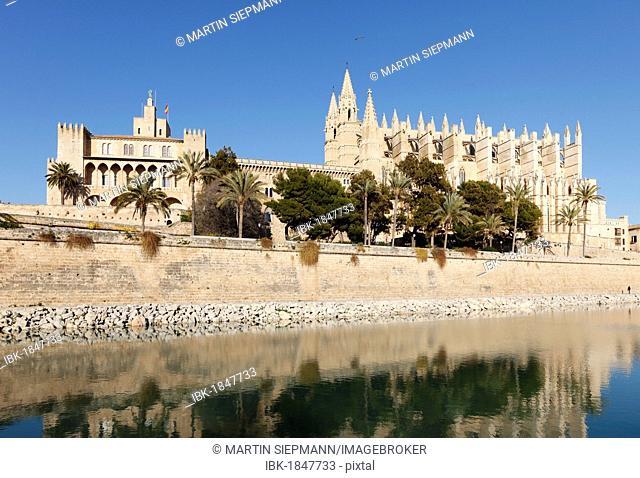 La Seu Cathedral, Parc de Mar, Palma de Majorca, Majorca, Balearic Islands, Spain, Europe
