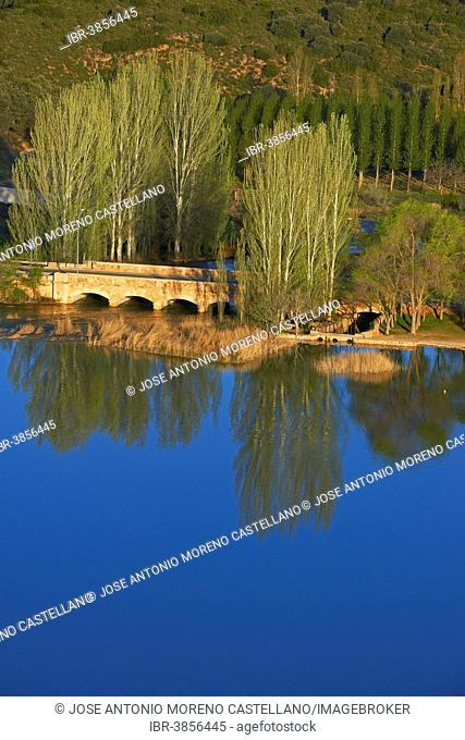 Ruidera Lagoons, Lagunas de Ruidera Natural Park, Campo de Montiel, Spain