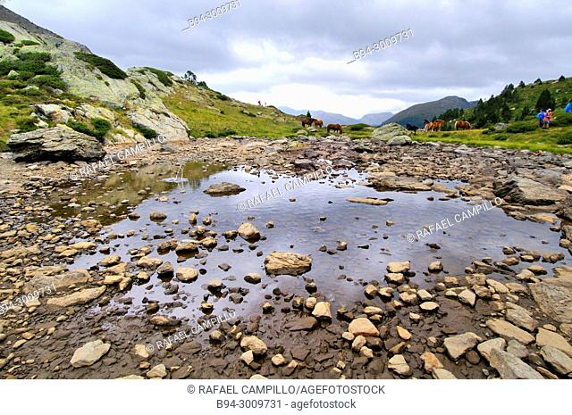The lakes of Tristaina, group of lakes of the Principality of Andorra, located in the Circus of Tristaina, in the parish of Ordino