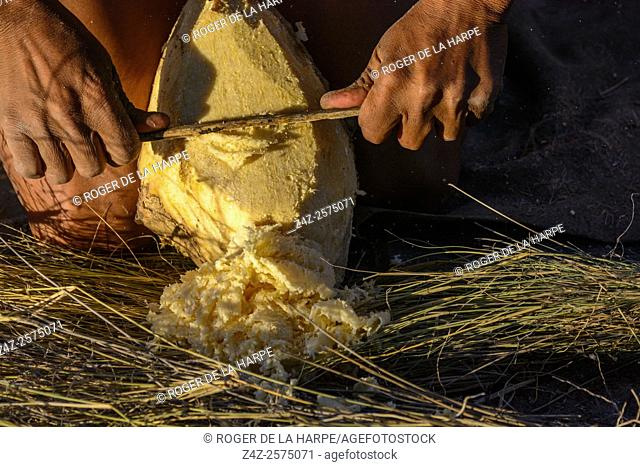 San or Bushman man scraping flesh off a bulb that will be used as a sourse of liquid for drinking and washing. Haina Kalahari Lodge. Botswana