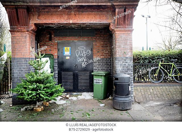 Street scene with garbage bins, Christmas tree and bicycle. Columbia Road, Flower Market, London, England