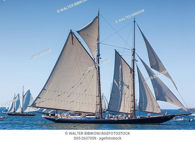 USA, Massachusetts, Cape Ann, Gloucester, annual Gloucester Schooner Festival, schooner Parade of Sail