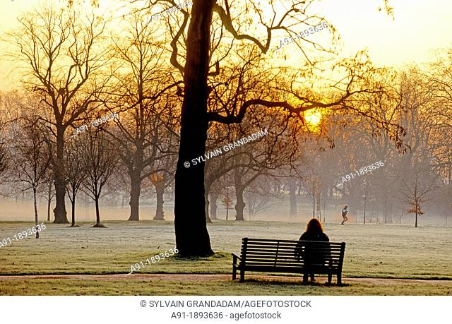 Hyde park in the morning  London  England