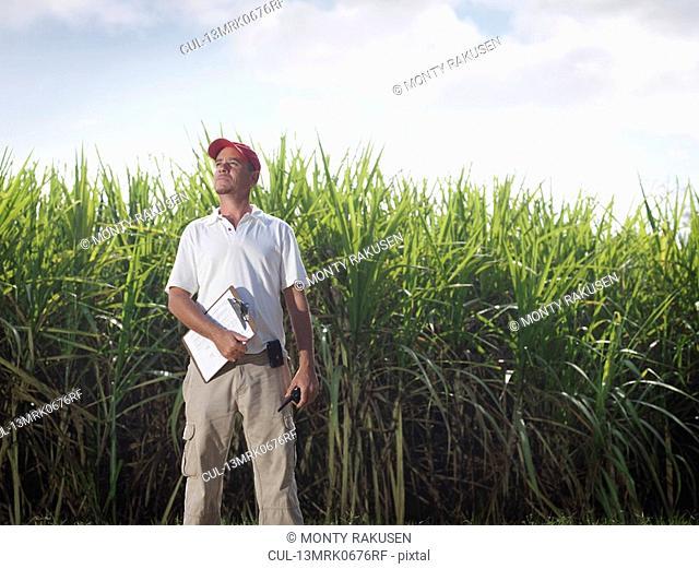 Supervisor With Clip Board & Sugar Cane