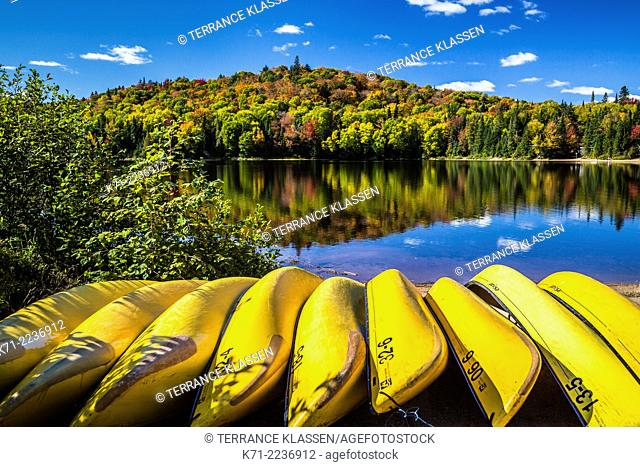 Yellow canoes and brilliant fall foliage color in the mountains of Mont-Tremblant National Park, Quebec, Canada