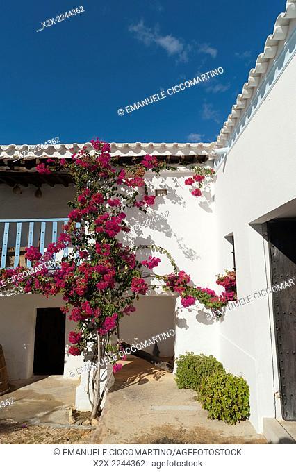 Spain, Balearic Islands, Ibiza, Traditional Payesa house
