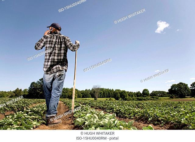 Farmer in field talking on cell phone