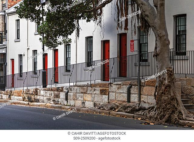 Terraced cottages in Harrington Street, The Rocks, Sydney, New South Wales, Australia