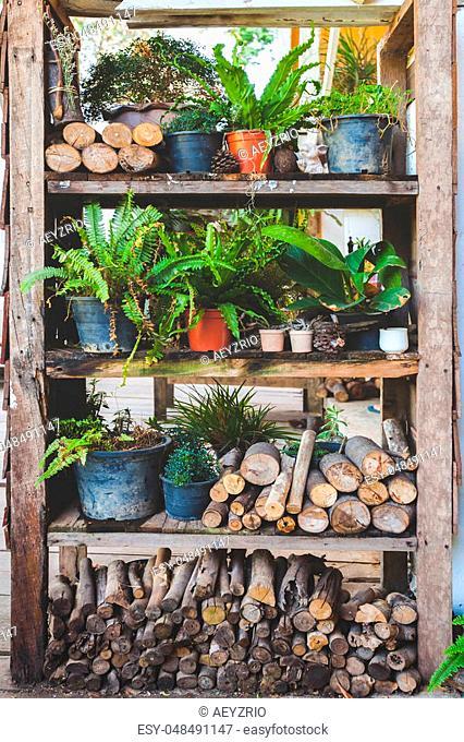 backyard garden in wood panel vintage shelf for plants