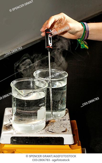 Two beakers of water are heated on a hot plate in a San Clemente, CA, high school chemistry lab experiment as a digital thermometer is used to check the...