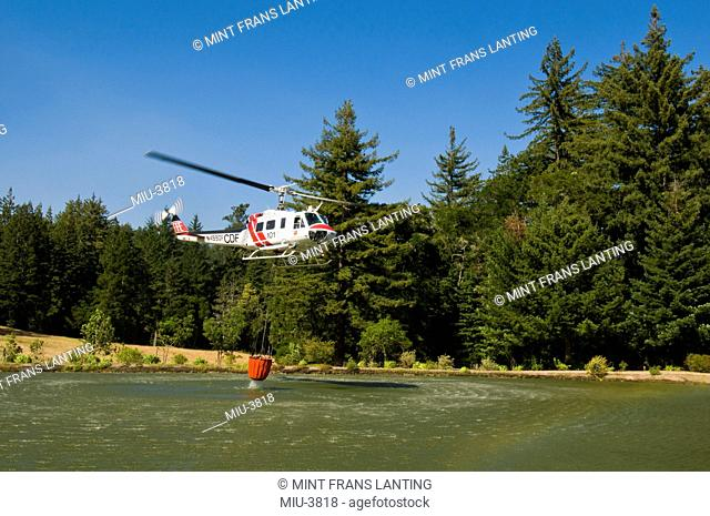 Helicopter loading water from pond to fight wildfire, Bonny Doon, Monterey Bay, California