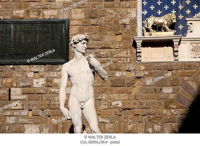 Michelangelo's David statue, Piazza della Signoria, Florence, Tuscany, Italy