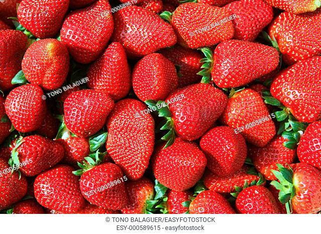 red strawberries pattern in maket box background