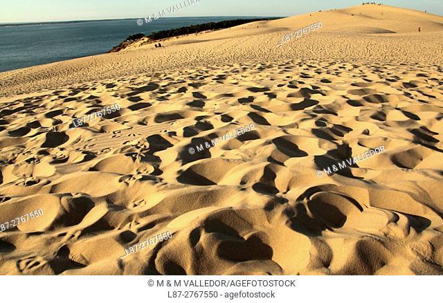 Grande dune du Pilat, pays du Buch