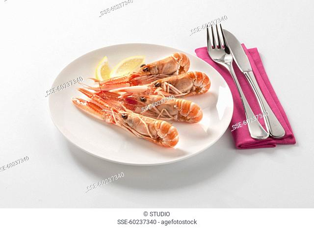 Plate of Dublin Bay prawns on a white background