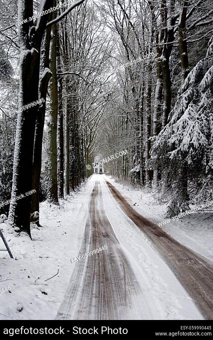 road and house in the snow in Dutch winter