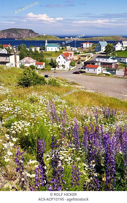 The town of Trinity seen from the main road, Bonavista Peninsula, Trinity Bay, Discovery Trail, Newfoundland & Labrador, Canada