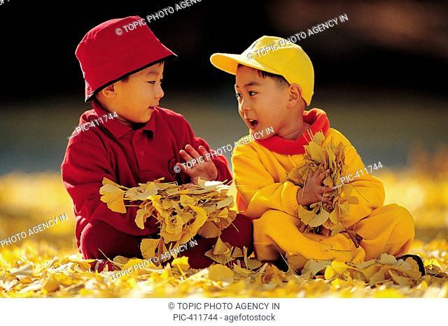 Boys Sitting On Gingko Leaves In Autumn,Korean