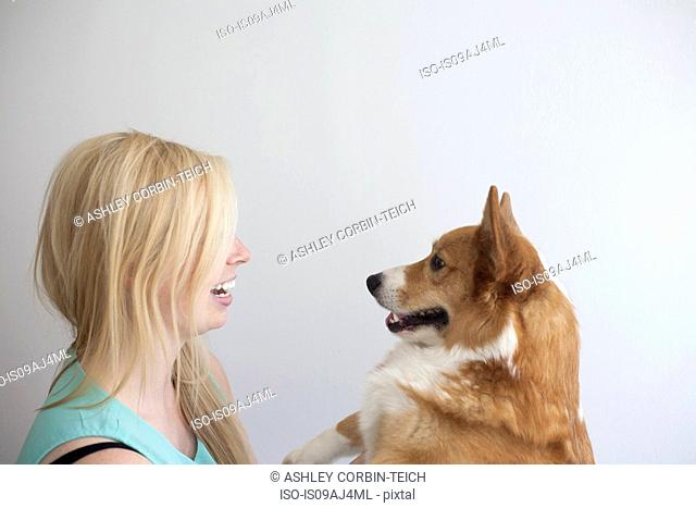 Portrait of cute corgi dog face to face with young woman