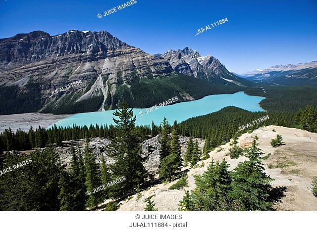 Aerial View of Peyto Lake, Banff National Park, Alberta, Canada