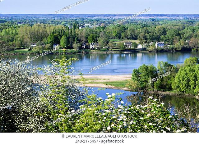 Panorama of Candes-Saint-Martin Village (One of the Most Beautiful Villages of France). It overlooks the confluence of the Vienne and Loire rivers from a steep...