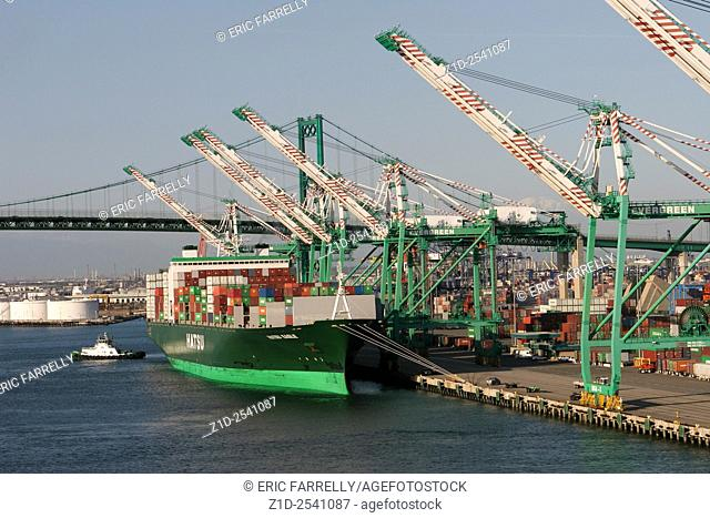 "Container ship """"Hatsu Eagle"""" at container berth. The port of Los Angeles USA"