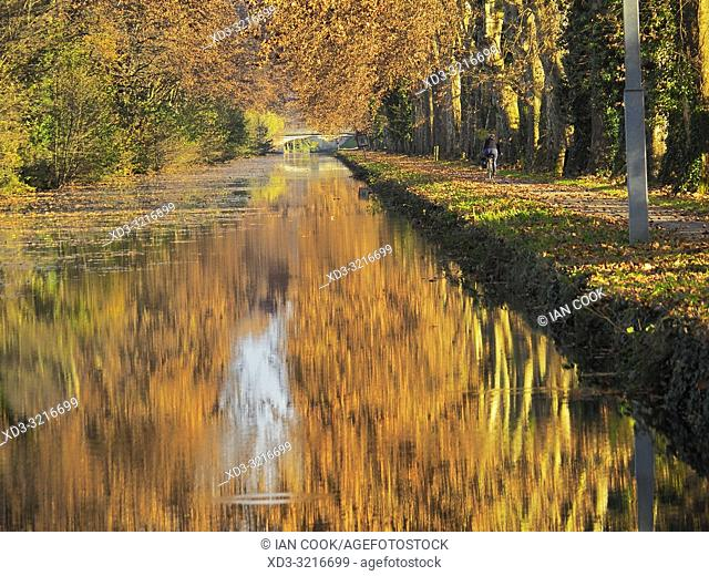 Canal de Garonne near Marmande in autumn, Lot-et-Garonne Department, Nouvelle Aquitaine, France