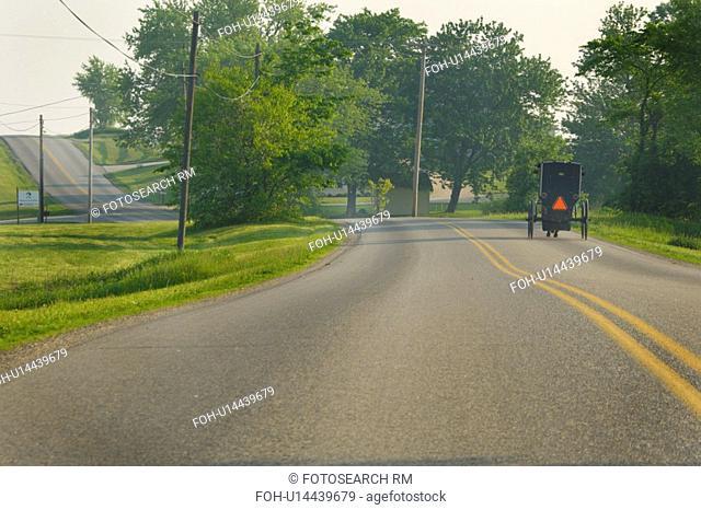 amish, pleasant, sugarcreek, road, valley, buggy