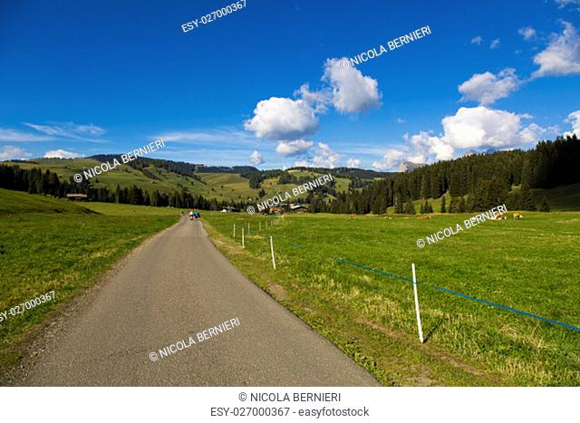 Hiking trail between green fields blue sky with clouds