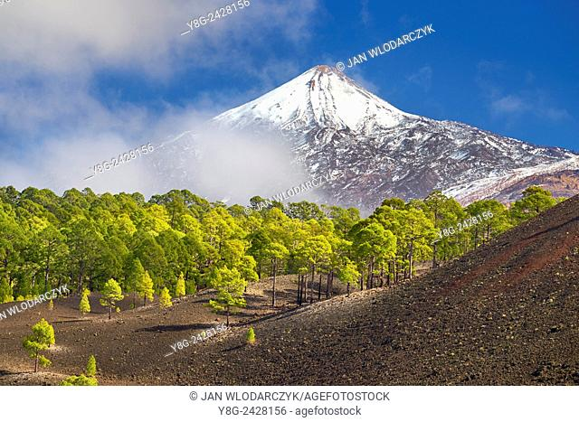 View of Teide Volcano Mount, Tenerife, Canary Islands, Spain