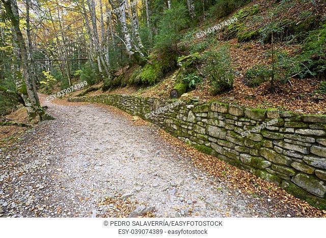 Hiking trail in Ordesa National Park, Pyrenees, Huesca, Aragon, Spain