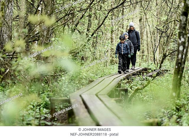 Mother and sons walking in forest