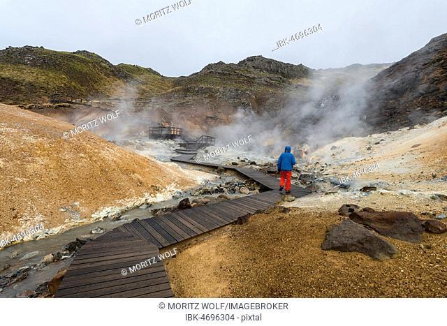 Hikers, Steaming Soil, Seltún Geothermal Area, Krýsuvík Volcano System, Reykjanesfólkvangur National reserve, Reykjanes, Sudurnes, Iceland