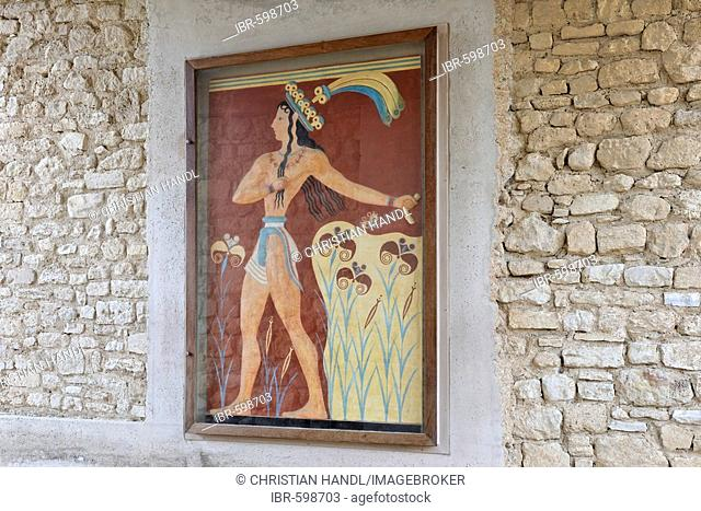 Relief depicting a Minoan prince with lilies in the Palace of Knossos, Crete, Greece, Europe