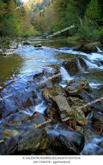 Irati in the Park River Forest Nature Irati. Navarra