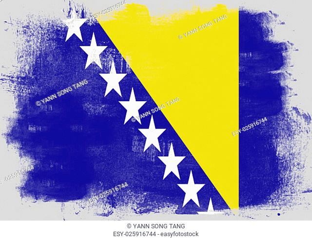 Flag of Bosnia and Herzegovina painted with brush on solid background