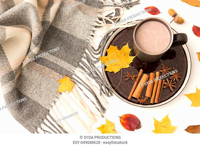 hot chocolate, autumn leaves and warm blanket