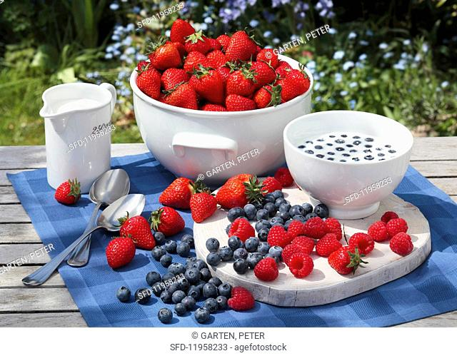Fresh berries and milk on a garden table