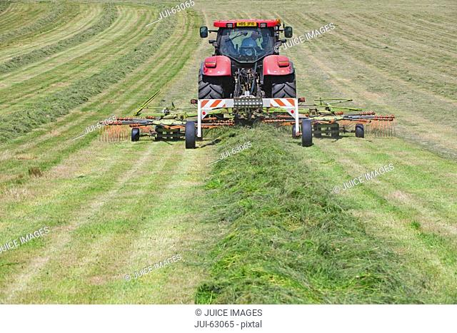 Tractor turning cut grass to dry for hay