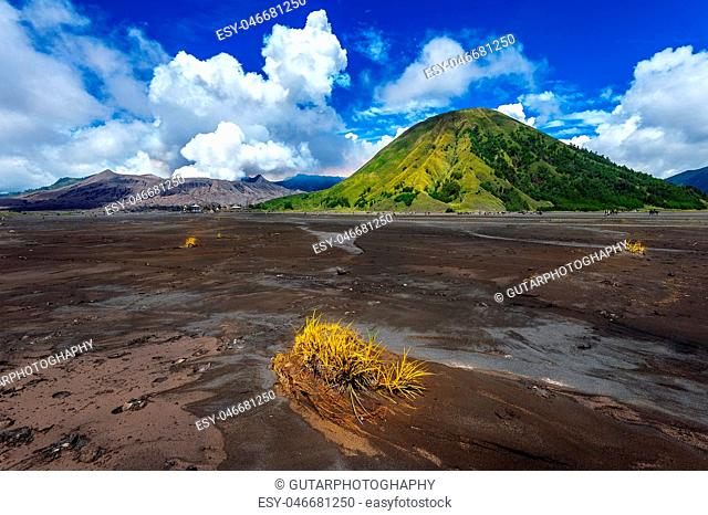 Mount Bromo volcano (Gunung Bromo)in Bromo Tengger Semeru National Park, East Java, Indonesia