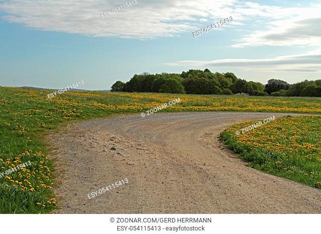 Landwirtschaftlicher Weg, Agricultural way