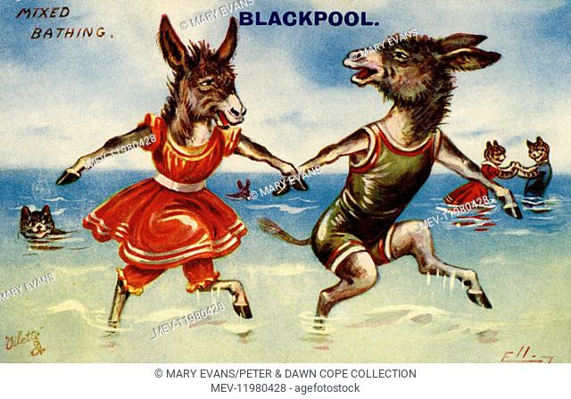 Donkeys in swimsuits frolicking on the beach